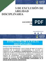 CAUSALES DE EXCLUSION.pptx