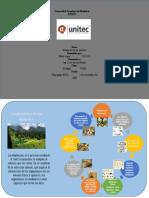 infograma ecologia s4