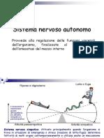 Silvy - Sistema Nervoso Autonomo