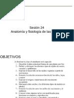 anatomia y fisiologia de las plantas TAREA 2 (1)