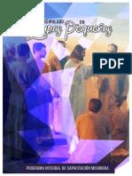 30 Programas Modelo Para Las Reuniones d