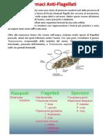 C4-2 - Tripanocidi (16-01-2020)