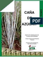 Caña de Azucar Version 13-05-19