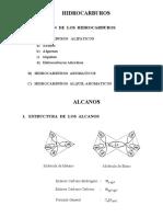 Copia de Hidrocarburos-Alcanos