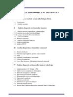 Analiza Diagnostic a SC Tritipn SRL