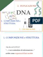 DNA_ComposizioneStrutturaDuplicazione