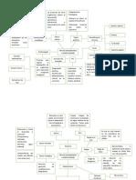 organizador gráfico tipos de organismos