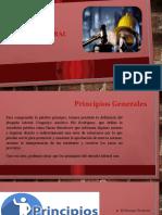 Principios Generales Del Proceso Laboral Dominicano