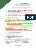 A.1.1 - Ficha de Trabalho -  Tipos e funções dos nutrientes (1) - Soluções