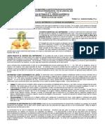 Guía de trabajo N° 2 TERCERO PERIODO- Grado 7