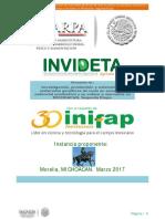 Proyecto Invideta Paso de Morelos Aric