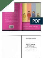 Constelar Familias. Fundamentos y Procedimientos-- Schneider