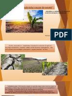 Dreptul mediului  Seceta