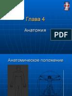 Глава 4 Анатомия Basic russ