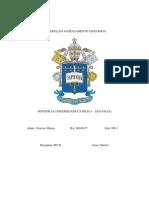 Prova IPT II-  Vinicius Marujo - RA00045477 - NB2