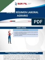 Nuevo Regime Laboral Agrario - Sunafil 11012020