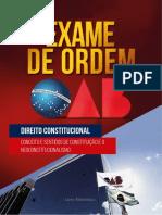 41443110 Conceito e Sentidos de Constituicao e o Neoconstitucionalismo(2)