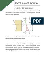 8-FORCAS E EXCENTRICIDADES (1)