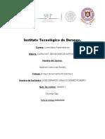 Instituto Tecnológico de Durang ensayo de curso integrador