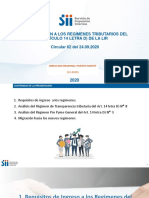 ppt regimenes art 14 D) LIR, 12-2020