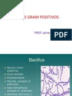 3-Bacilos Gram Positivos