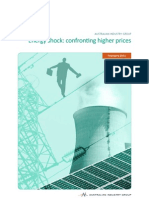 Energy shock_ confronting higher prices