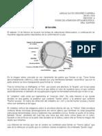 bitacora III oftalmología