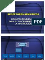 RECEPTORES SENSITIVOS DOLOR TORACICO URGENCIAS
