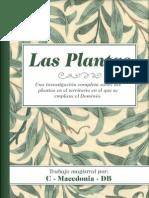 Las Plantas5