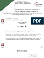 Apresentação SEIC 2020.