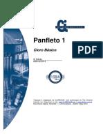 Panfleto01 Port