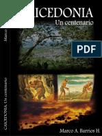 Los Castigos Las Pelas. Caicedonia, Un Centenario