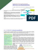 tema 10 la función directiva