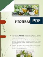 Lp 8. Fitoterapia