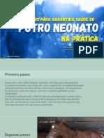 7 passos para garantirA SAÚDE do potro NEONATO2