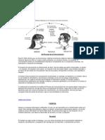 Elementos del Proceso de la Comunicación