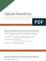 Aula 05 - Zeros de funções polinomiais e problemas