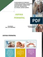 ASFIXIA PEINATAL