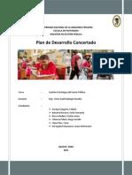 TRABAJO PLAN DE DESARROLLO CONCERTADO 17-01-2020