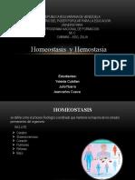 homeostasis y hemostasia