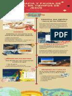 Rojo Marrón Iconos Ilustrado Examen Cronología Infografía (3)