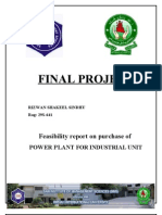 Feasibility report for power plant