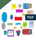 mapa mental- etnografia