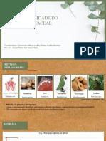 quimiodiversidade da família sapotaceae