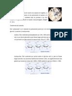 Almidón, Lipidos, Latex