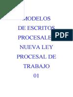 Modelos de Escritos Nueva Ley Procesal de Trabajo