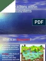 Ecosystem Intro
