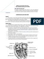 MS 1 Lecture The Cardiovascular system (1)