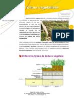 toiture_vegetalisee