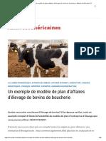 ⋆ Un exemple de modèle de plan d'affaires d'élevage de bovins de boucherie ⋆ Affaires Américaines !!!!